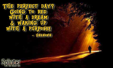 """The perfect day? Going to bed with a dream and waking up with a purpose."""